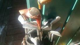 Set of golf clubs in carry bag
