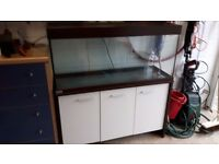 Versatile animal tank, filter and accessories.
