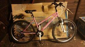 "Falcon Vienne Womens Mountain Bike - 17"""
