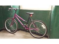 Mountain Bike - 18 speed