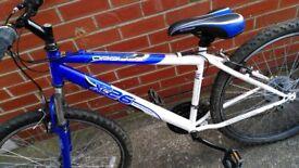 """Girls/Ladies 26"""" Apollo XC26 bike"""