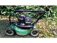 """Hayter graveyard mower 12"""" cut 30cm rough verge orchard"""