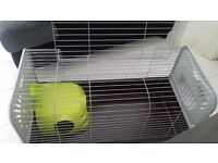 Nice comfortable home for a rabbit or guinea pig