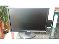 "Dell 19"" LCD screen"