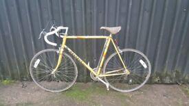 12 Speed Vintage Peugeot Road Bike