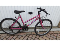 Oversize Blaze Ladies bike £40