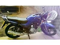 2008 yamaha ybr 125cc