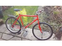 Raleigh Road / Mountain Bike - 21.5 inch frame £40