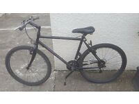 Mens Saracen Sahara Mountain Bike