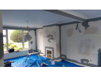 painter , painting and decorating services