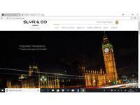 Online retail business for sale - men's watch brand inc. stock, website etc