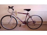 Adult bike lightweight frame