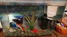 Small fishtank and filter