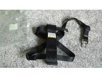 New Ancol walking & car seat harness