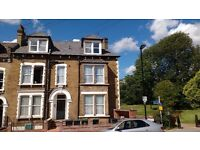 Very bright and spacious furnished double room in a great top floor two bedroom flat