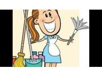 Self employed housekeeper/cleaner wanted £10-£15 per hour