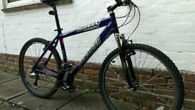 SPECIALIZED HARDROCK - mountain bike