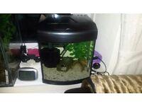 small nano cube fish tank