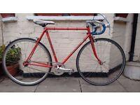Fast and lightweight Carlton Singlespeed/Fixie bike Reynolds 531 Frame