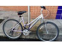 Ladies Mountain Bike Viking Verona