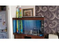 Juwel Rio 300 aquarium full set up + Fluval 405