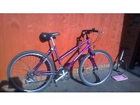 Classic Holdsworth Kendal Ladies Bike.. Quality Light Weight Ride with Powerful brakes. £65.. Choice