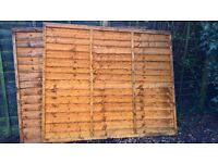 Two 5 feet fence panels
