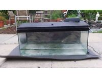 3 FT Fish Tank , With Lid, Light and 3D Background