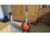 For Sale Mandolin & Stand