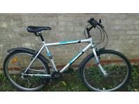 Bike 26 inch whells