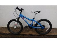 Kids Ridgeback MX20. Cost over £200. Brilliant condition. Been stored inside.