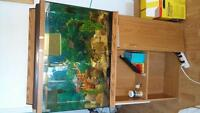 40 gallon fish tank. Complete with stand