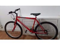 Mens Raleigh Mountain Bike in Excellent conditions!