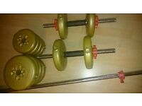 Dumbell and weights set