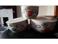 3 multi-purpose food bowls