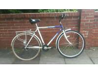 Raleigh light hybrid road bike