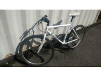 WOODWORM GLACIER MOUNTAIN BICYCLE 18 SPEED 26 INCH WHEEL AVAILABLE FOR SALE