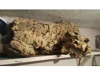 Vivarium large log