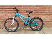 Ridgeback mx20 mountain bike