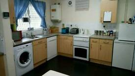 Urgent, 2 bedroom house or flat with own garden in Brighton or Hove wanted