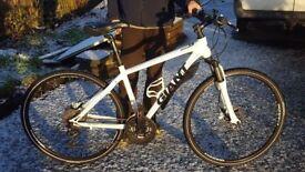 Giant Roam 1 bike