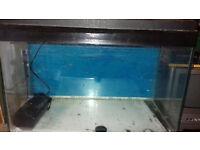 24x12x17 aquarium complete with stones light and filter plus pump