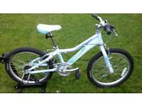 GIANT AREVA 2 LITE 20 KIDS BIKE * FULLY SERVICED / SUPERB CONDITION *