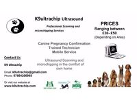 K9ultrachip microchipping and pet ultrasound