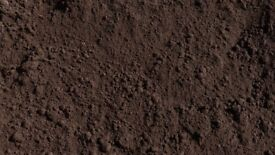 Brown screened top soil