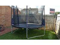 10ft plum trampoline