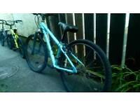 Selection of push bikes needing tlc