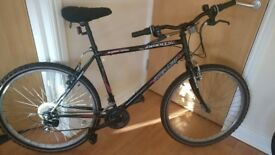 x2 Bicycles for sale