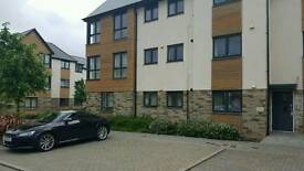 Lovley new one bedroom to rent with own bathroom (derriford hospital)