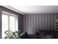 House renovation: Plaster board, Plaster, Paint, Wall Paper, Decor Paint, Tileing , Plumbing Works